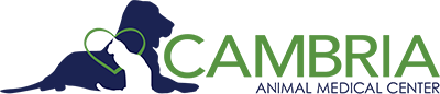 Cambria Animal Medical Center
